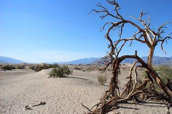 Der Death Valley National Park