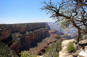 Westküste: Der Grand Canyon