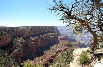 Ein Tag für den Gran Canyon National Park reicht aus.